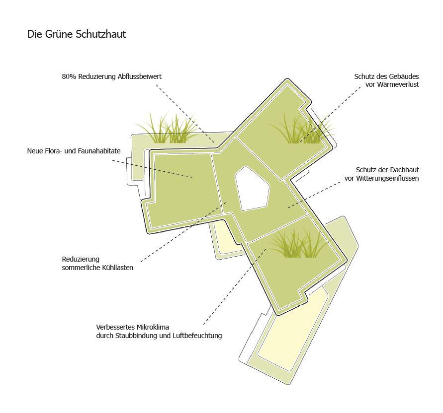 Heinrich-Schliemann Gymnasium Wettbewerbsbeitrag